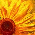 SUNFLOWER - Art Group